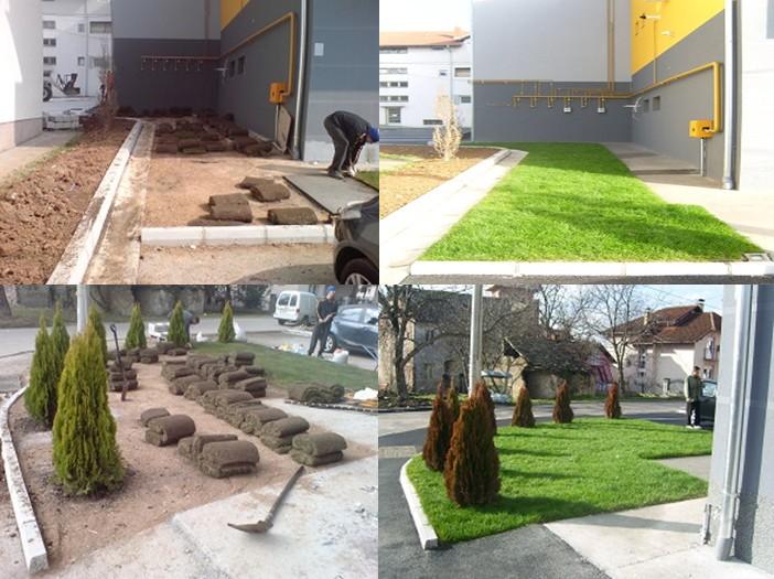 Formiranje travnjaka